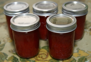 Strawberry Vinegar II