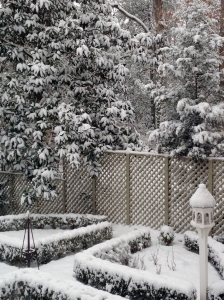 View from my Kitchen Window this Afternoon!