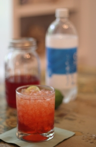 Adult Beverages Strawberry Vodka cocktail