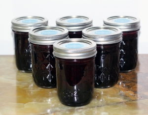 Blueberry Jam II