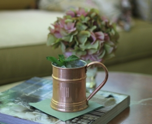 Adult Beverages Moscow Mule I