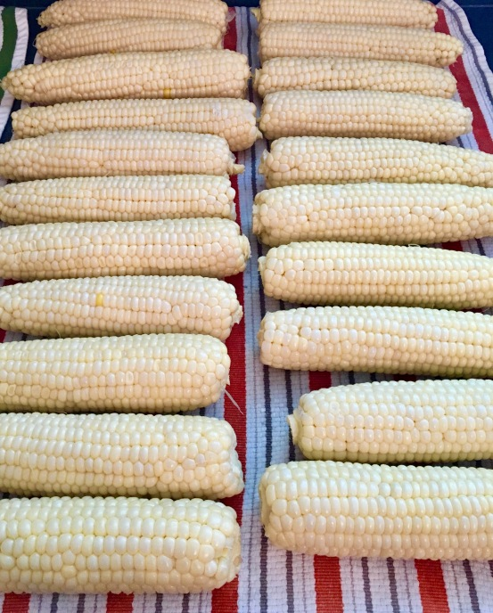 Freezing Corn III